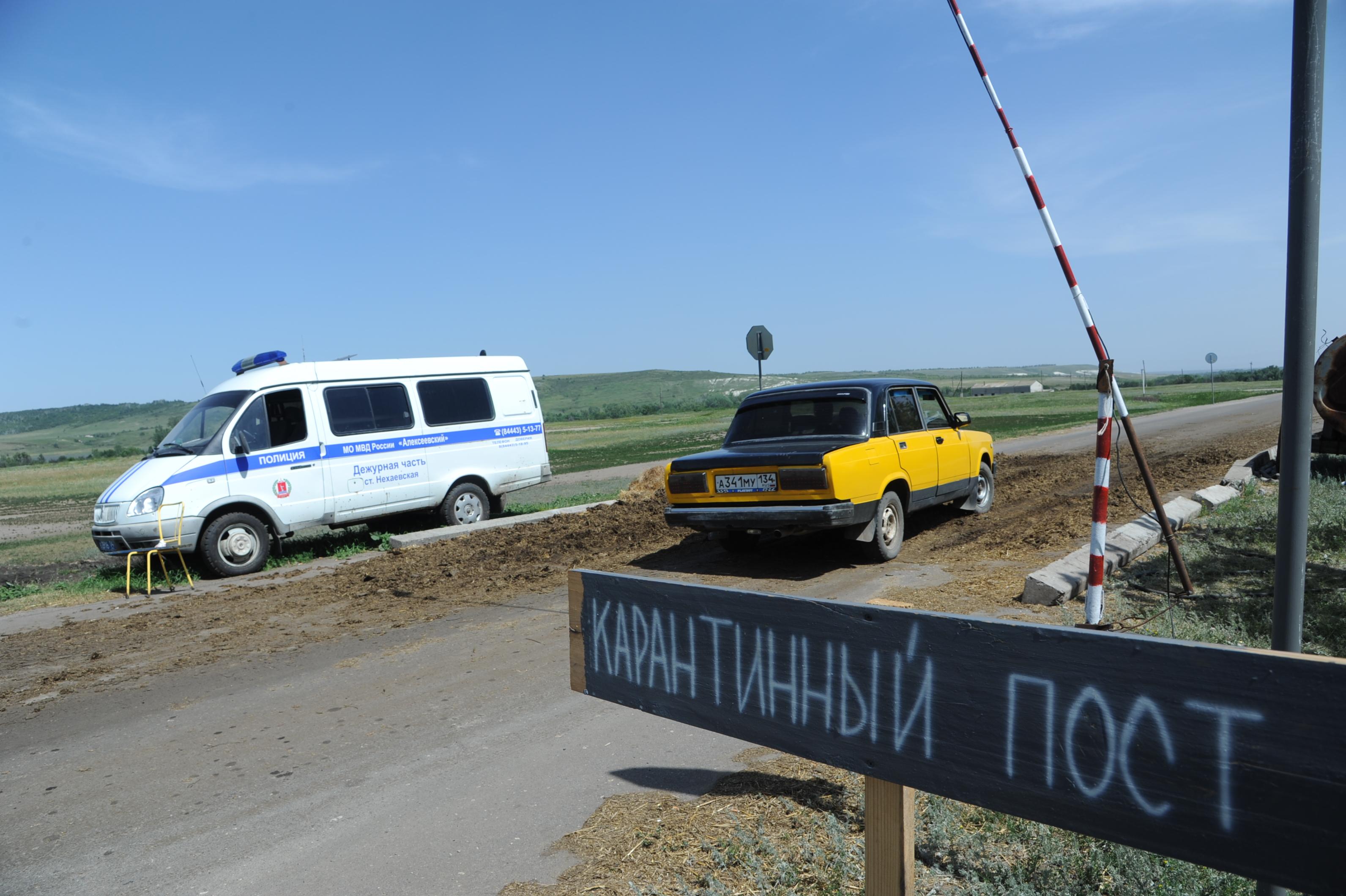 Волгоградская область принимает дополнительные меры по борьбе с АЧС