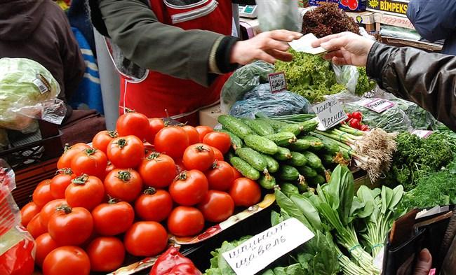 В Волгоградской области в разгаре уборка овощей